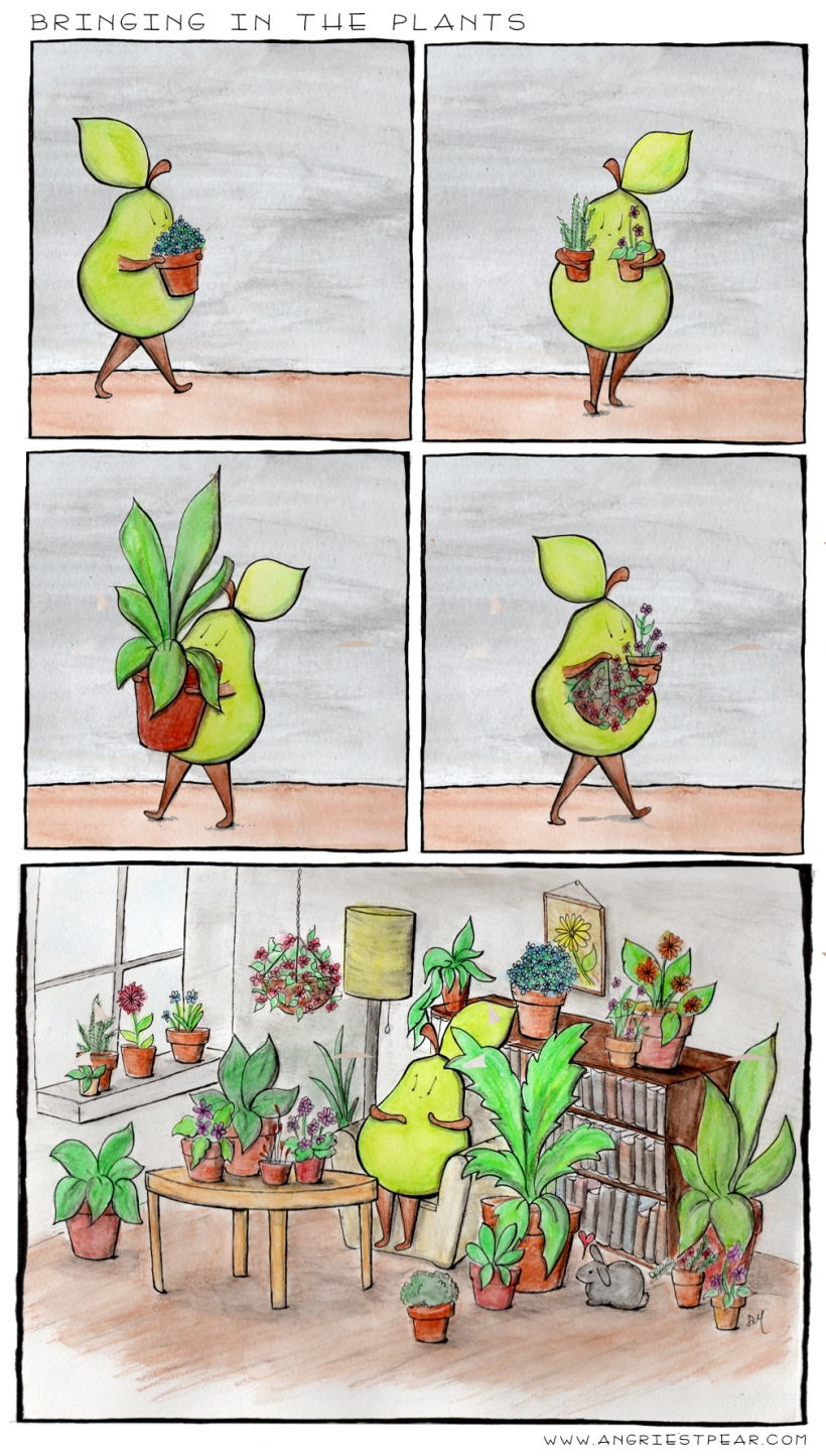 bringing in the plants
