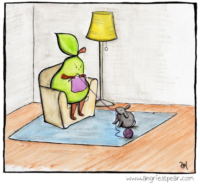 knitting wth rabbit color