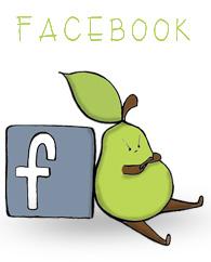 facebook widget jan 2014