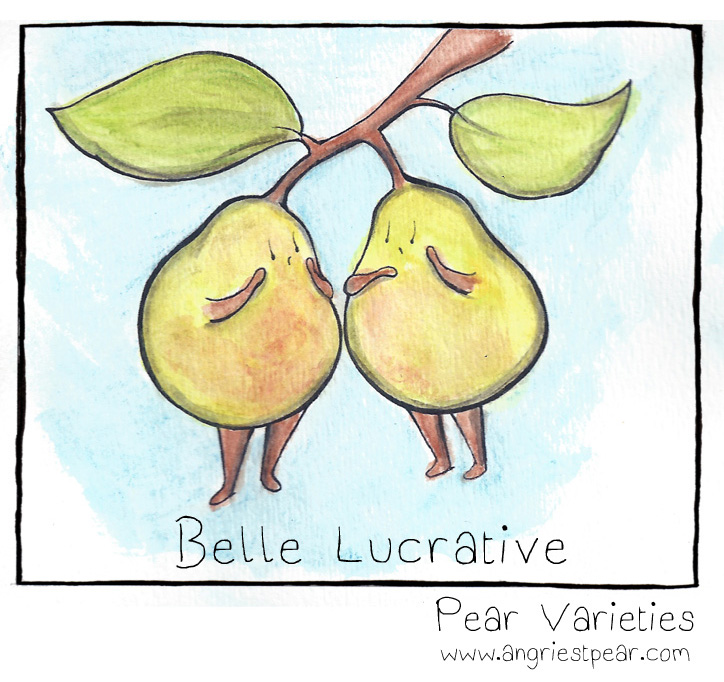 belle lucrative pear final