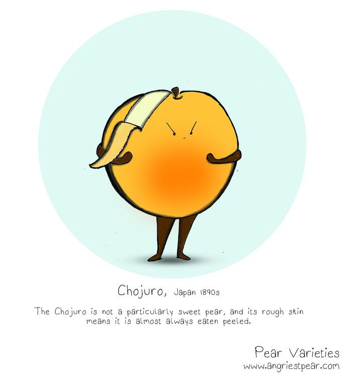 chojuro 1