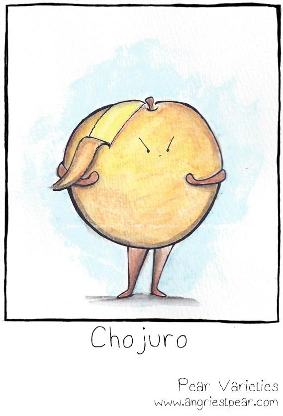 chojuro 2