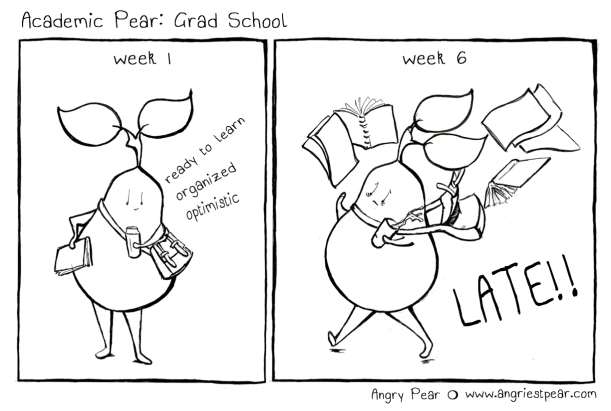 academic pear grad school